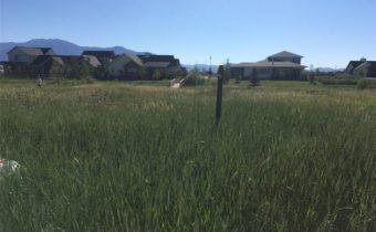 1460  Windrow Drive, Bozeman, MT 59718