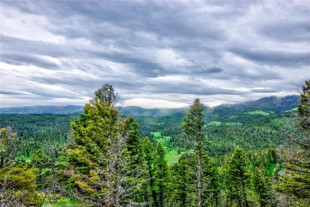 14948  Pony Creek Road, Bozeman, MT 59715