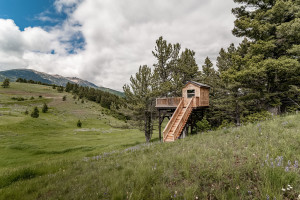 2803 Bridger Hills, Bozeman, MT - Tree House-01