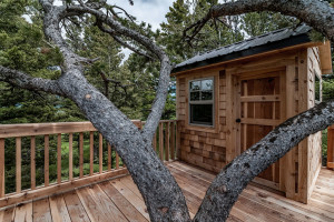 2803 Bridger Hills, Bozema, MT - Tree House