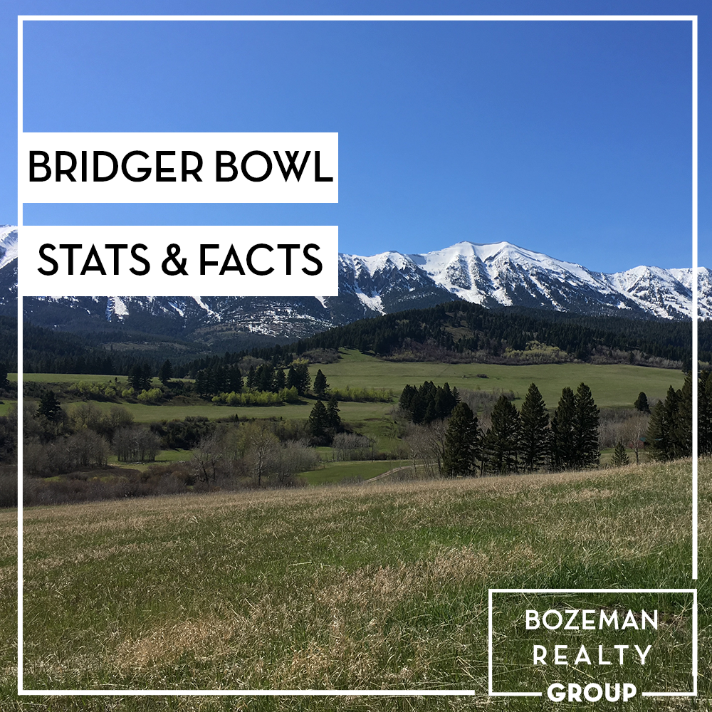 Bridger bowl stats and facts