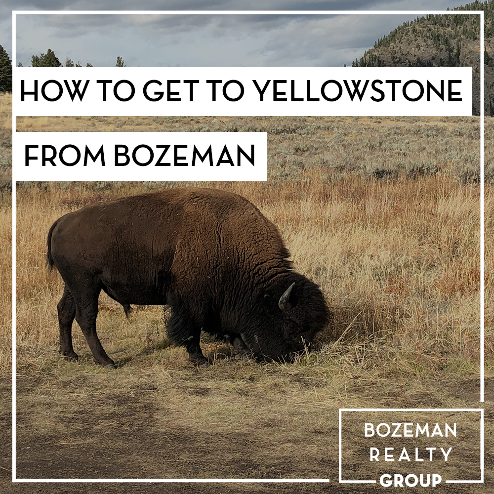 How To Get To Yellowstone From Bozeman