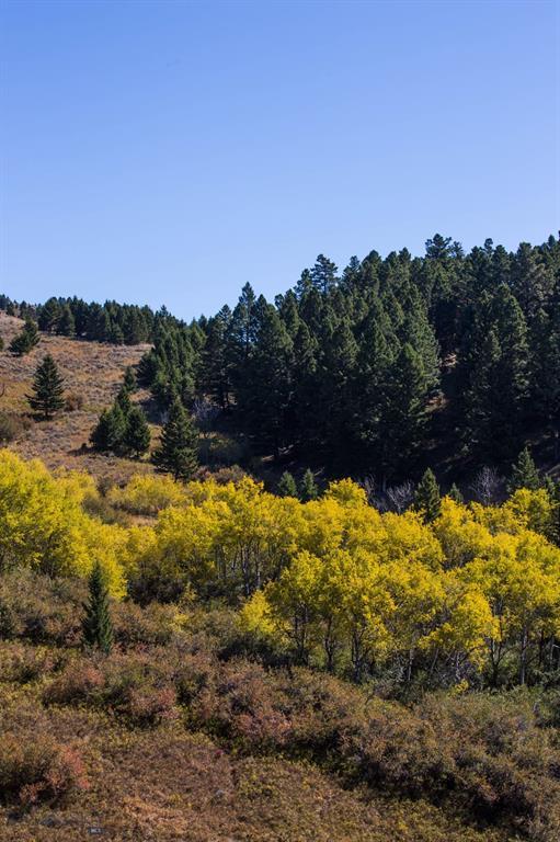TBD  Trail Creek Road, Bozeman, MT 59715