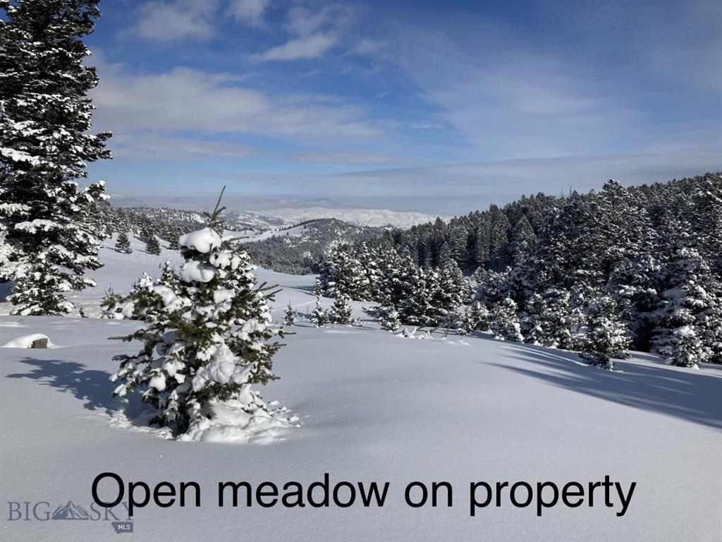 NHN  Quinn Creek Rd, Bozeman, MT 59715