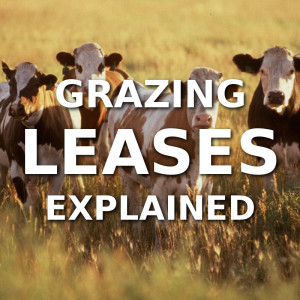 Grazing Leases Explained