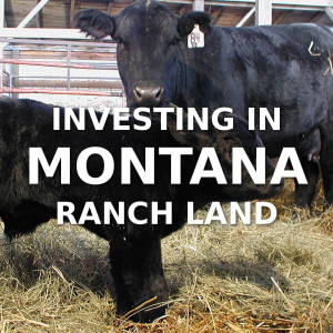 Investing In Montana Ranch Land