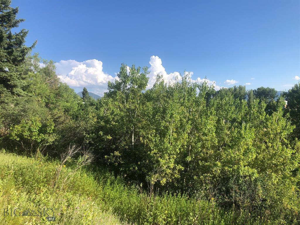NHN Lot 4  Sourdough Road, Bozeman, MT 59715
