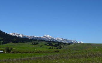 TBD  Jackson Creek, Bozeman, MT 59715