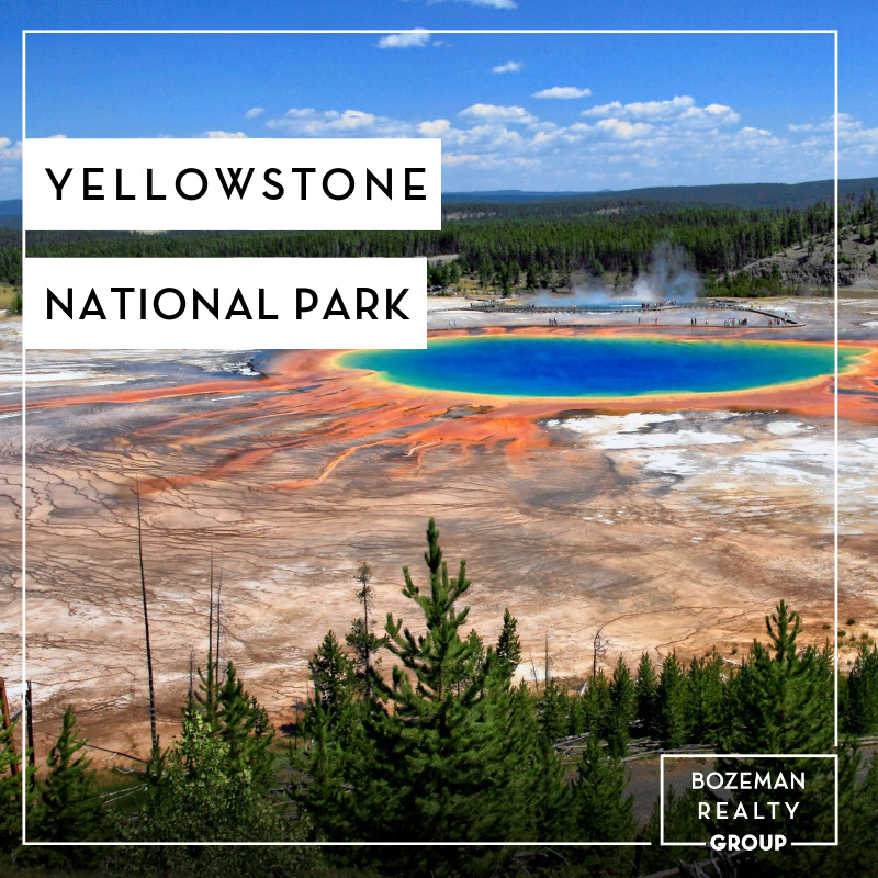 - Yellowstone National Park - Bozeman Realty Group